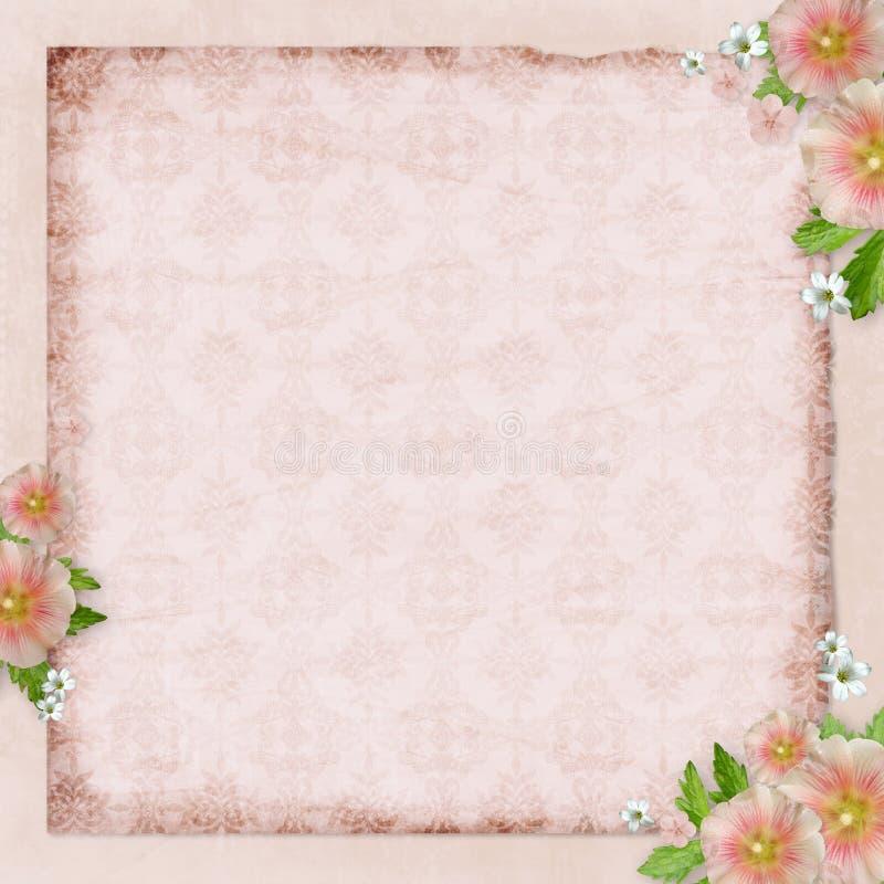 Tarjeta de la vendimia y malva rosada libre illustration