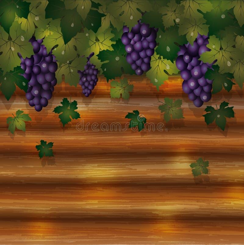 Tarjeta de las uvas del otoño con el fondo de madera ilustración del vector