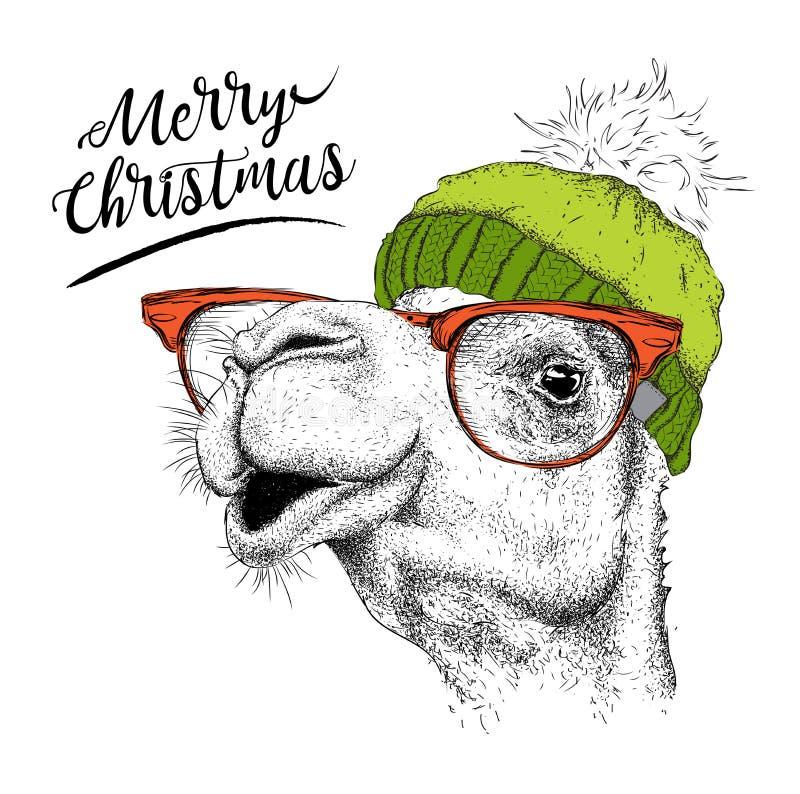 Tarjeta de Navidad con el camello en sombrero del invierno Diseño de letras de la Feliz Navidad Ilustración del vector stock de ilustración
