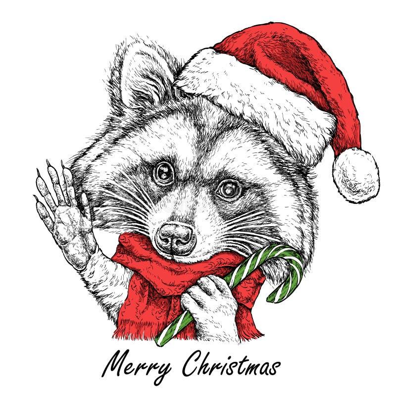 Tarjeta de Navidad con el retrato lindo del mapache en sombrero y bufanda rojos del ` s de Papá Noel Ilustración del vector ilustración del vector