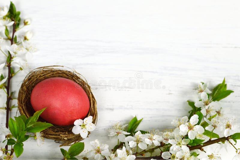Tarjeta de pascua con las flores de Pascua y el huevo de Pascua en la jerarquía en fondo del grunge fotografía de archivo