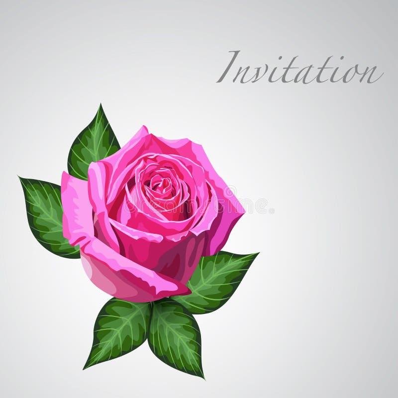 Tarjeta de regalo con la flor de la rosa del rosa stock de ilustración