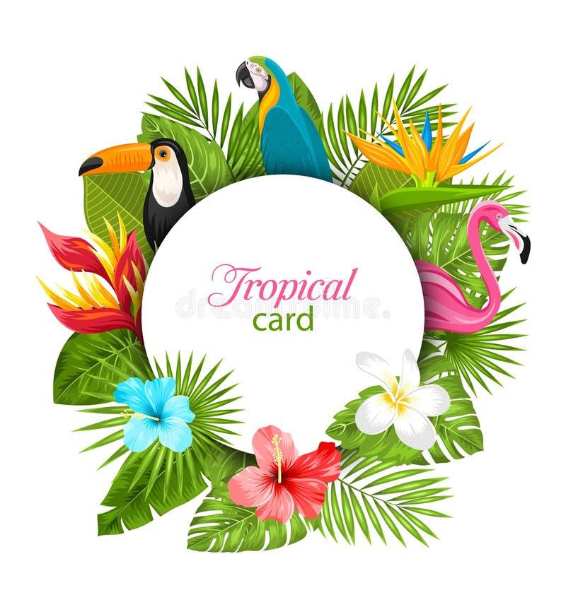 Tarjeta de verano con las plantas tropicales, hibisco, Plumeria, flamenco, loro, tucán stock de ilustración