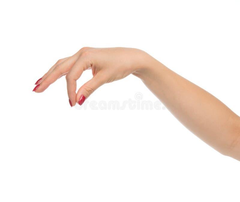 Tarjeta de visita virtual de la muestra del control de la mano de la mujer foto de archivo libre de regalías