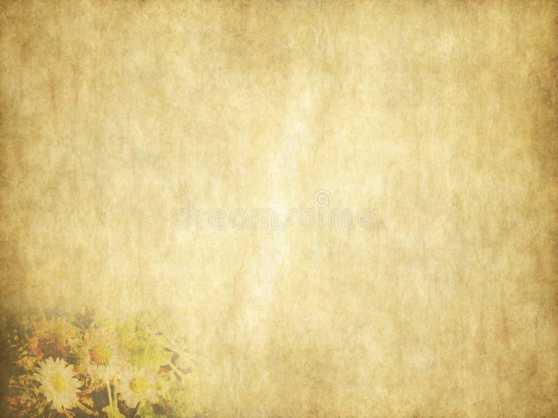 Tarjeta del día de fiesta de las margaritas de la belleza del vintage en el papel viejo ilustración del vector