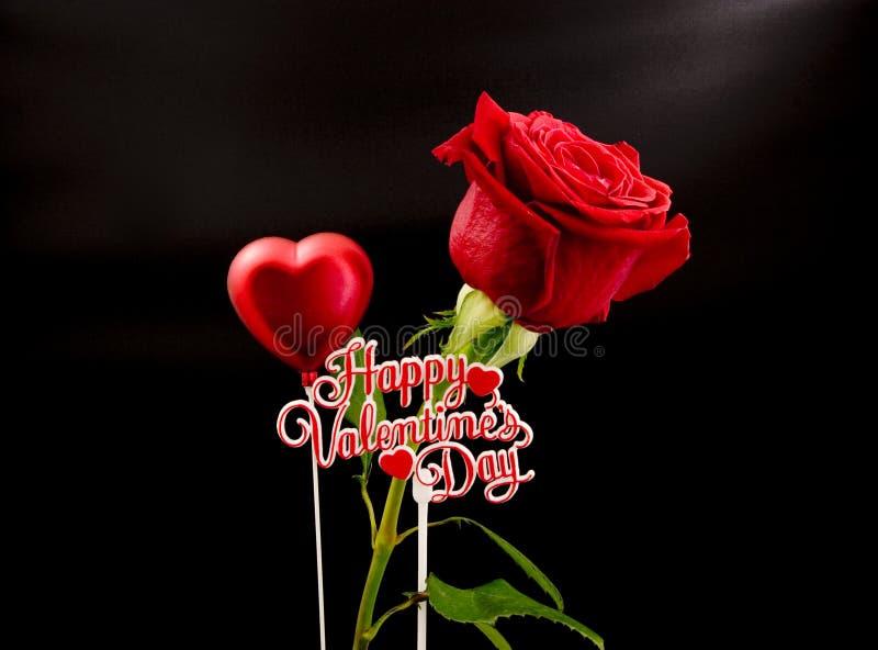 Tarjeta del día de San Valentín Rose fotografía de archivo libre de regalías