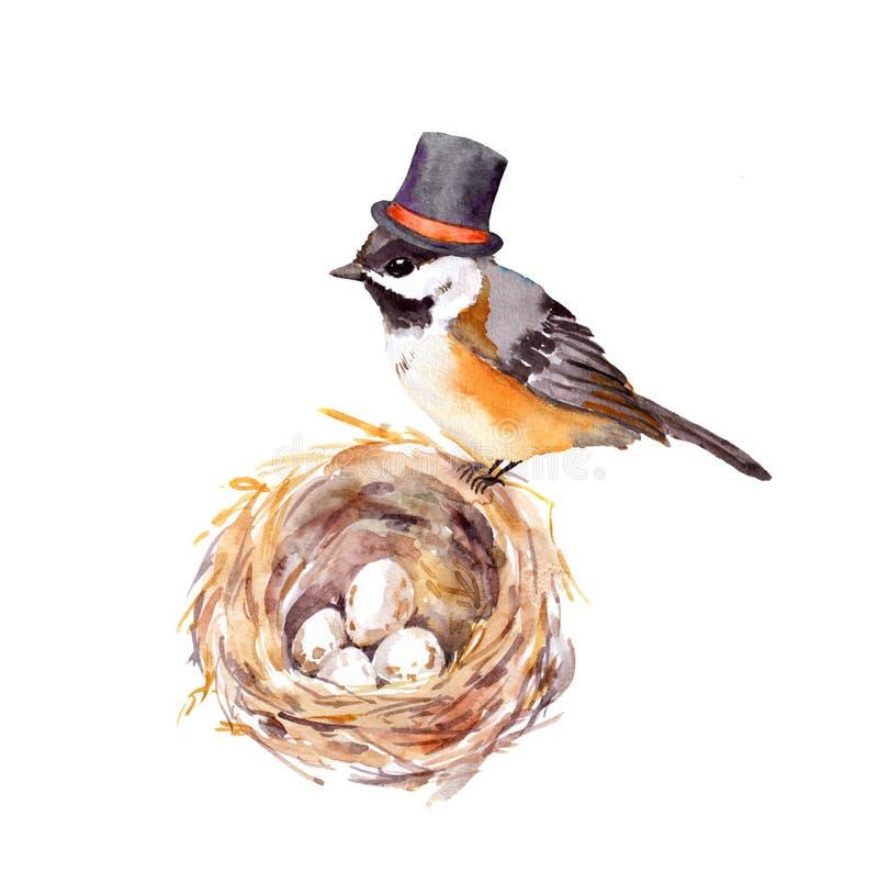 Tarjeta del día del ` s del padre Pájaro del vintage en sombrero alto en la jerarquía con los huevos Pintura de la acuarela libre illustration