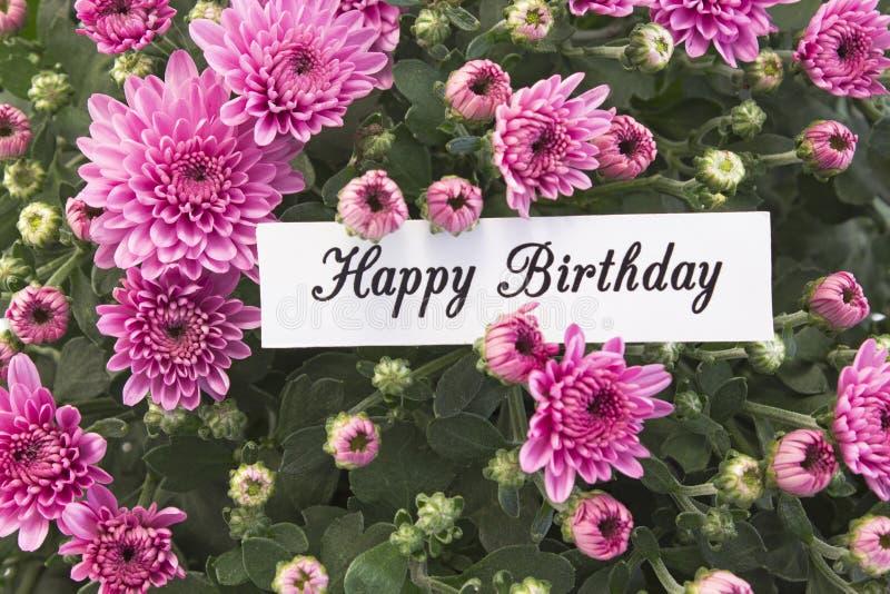 Tarjeta del feliz cumpleaños con el ramo de crisantemos rosados fotos de archivo