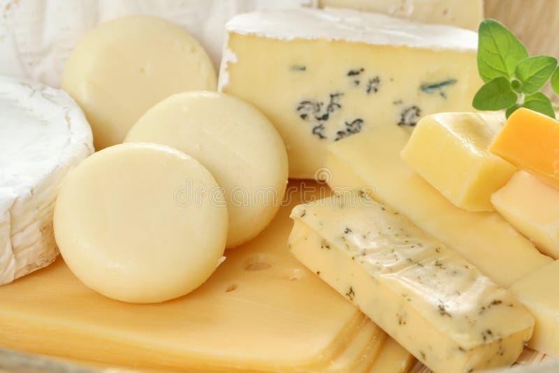 Tarjeta del queso imagen de archivo