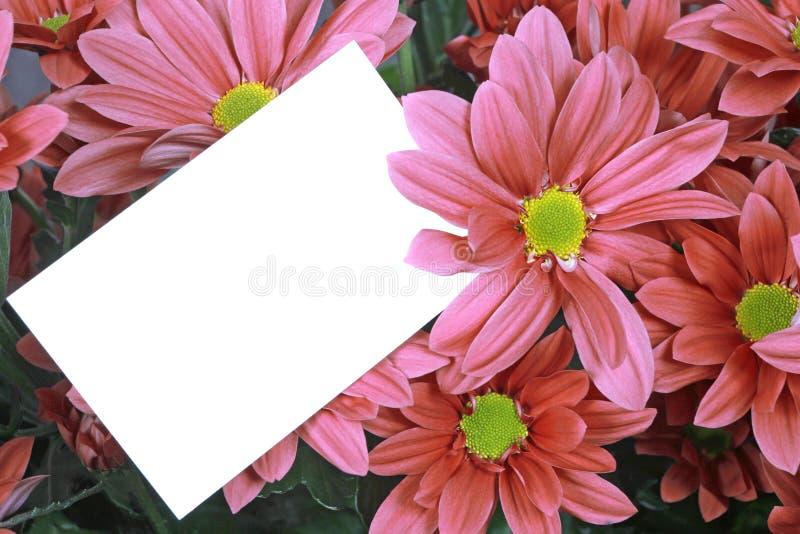 Tarjeta del regalo y flores rosadas fotos de archivo libres de regalías