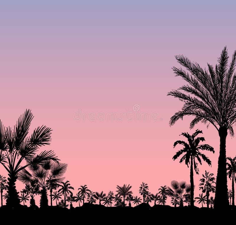 Tarjeta del vector con la silueta realista de las palmeras en puesta del sol rosada o salida del sol del grunge tropical libre illustration