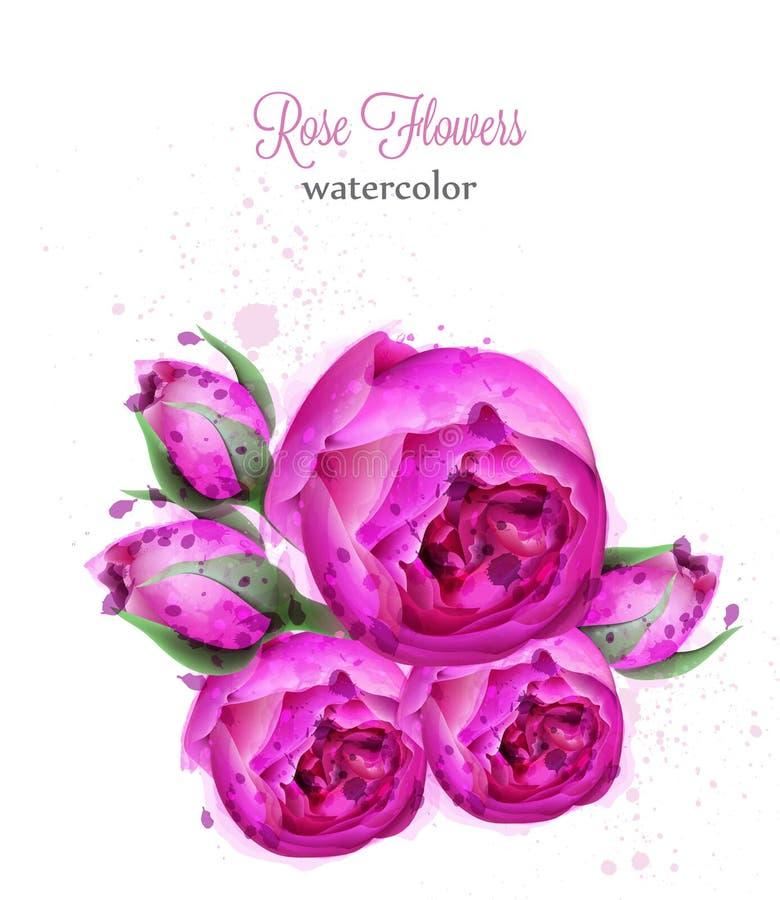 Tarjeta del vector de la guirnalda de la acuarela de las flores de Rose Decoraciones florecientes hermosas de las flores aisladas stock de ilustración