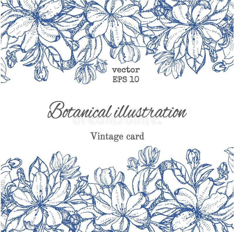 Tarjeta del vintage con las flores del jardín Flores dibujadas mano del manzano libre illustration