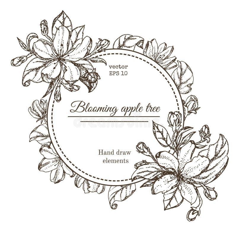 Tarjeta del vintage con las flores del jardín Flores dibujadas mano del manzano Cereza floreciente de las ramas del ejemplo del v foto de archivo