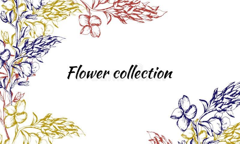 Tarjeta del vintage para el texto con colores del contorno Modelos dibujados de la primavera para la decoración, papel, tarjetas, libre illustration