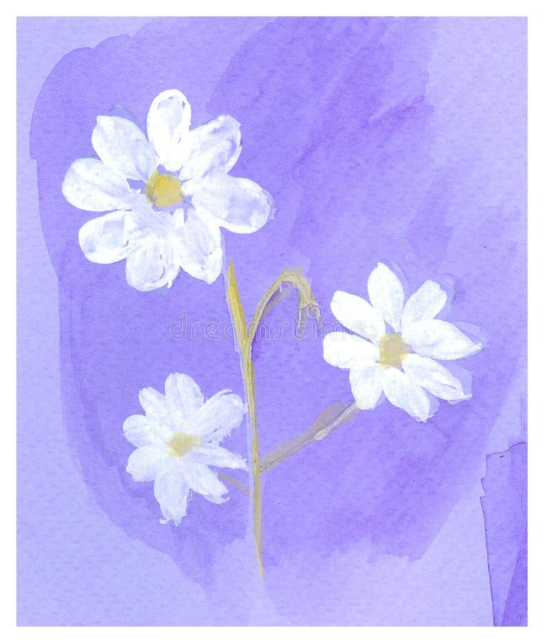Tarjeta dibujada mano hermosa con las flores blancas watercolor ilustración del vector