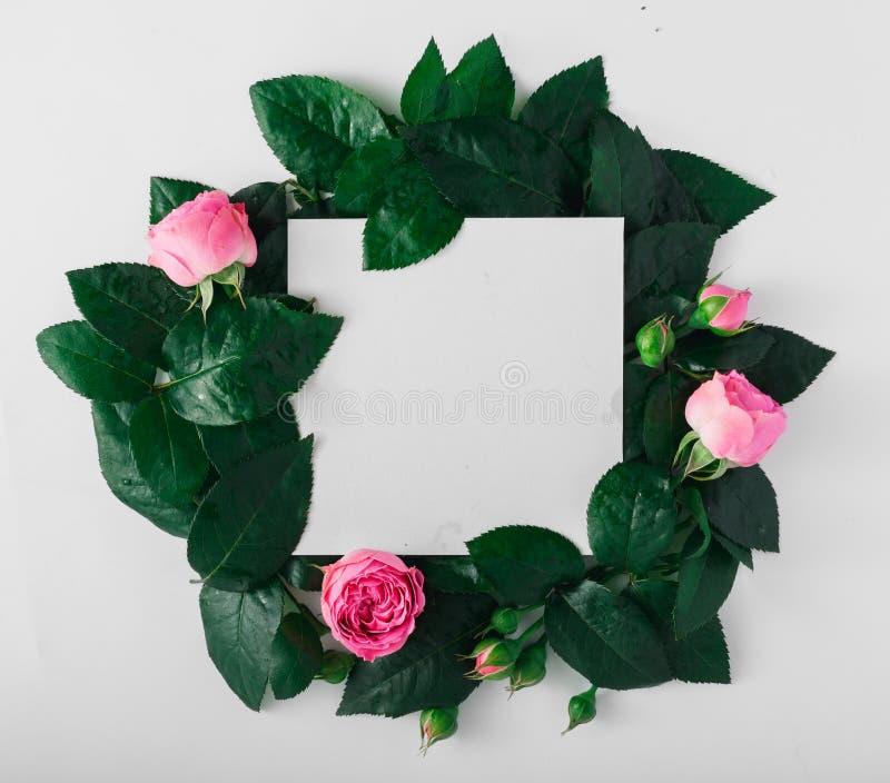 Tarjeta en blanco con las rosas y las hojas en un fondo blanco fotos de archivo