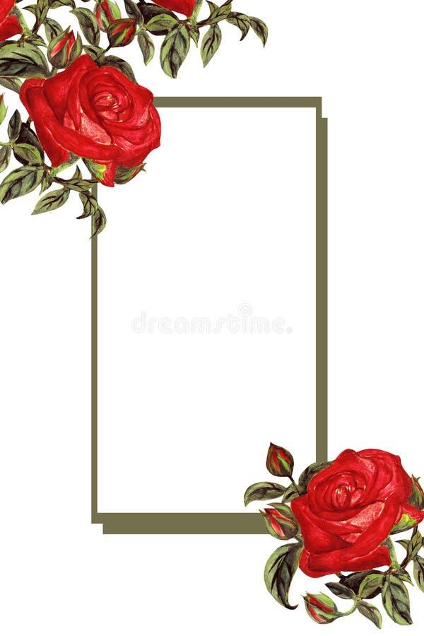 Tarjeta exhausta de las rosas del vintage, marco floral de la mano de la acuarela ilustración del vector