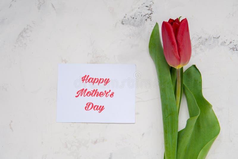 Tarjeta feliz del día del ` s de la madre con los tulipanes rojos imagen de archivo libre de regalías