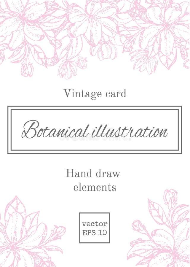 Tarjeta floral del vintage con las flores del jardín fondo romántico Ilustración del vector ilustración del vector