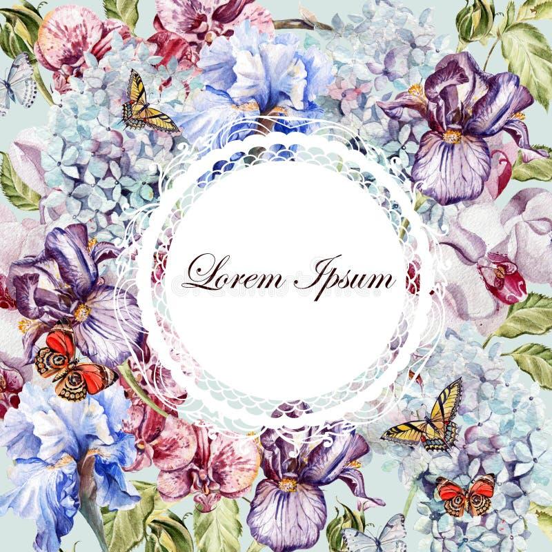 Tarjeta hermosa de la acuarela con la hortensia, flor de la orquídea, iris stock de ilustración