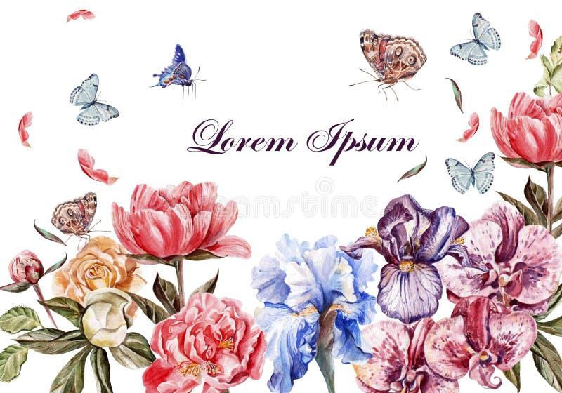 Tarjeta hermosa de la acuarela con las flores de la peonía imágenes de archivo libres de regalías