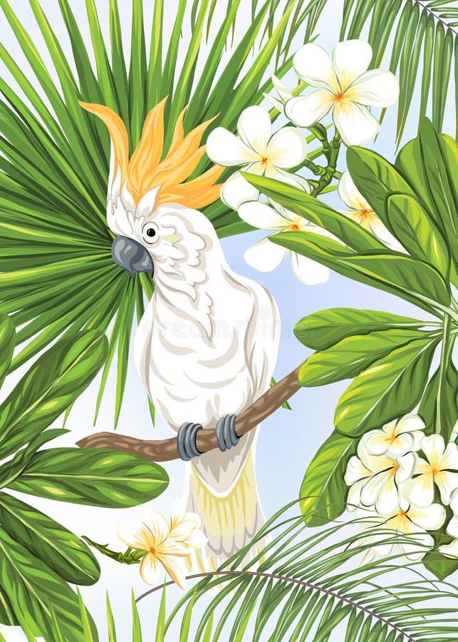 tarjeta nea 1 stock de ilustración