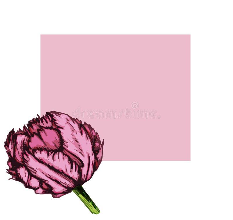 Tarjeta púrpura del tulipán con leg-04 cuadrado stock de ilustración