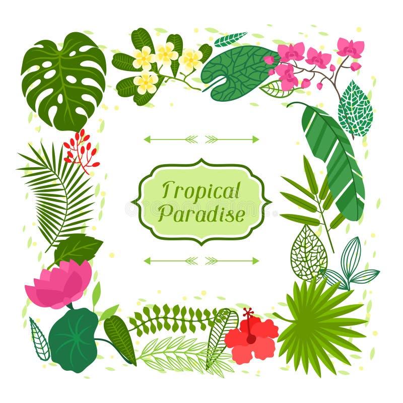 Tarjeta tropical del paraíso con las hojas estilizadas y stock de ilustración