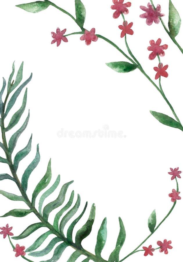 Tarjeta verde de la rama de la acuarela en un fondo blanco ilustración del vector