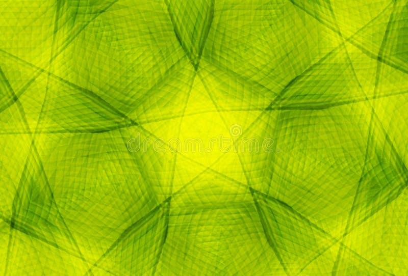 Tarjeta verde del vintage con la mandala stock de ilustración