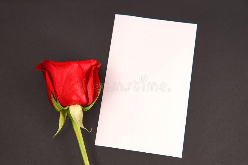 Tarjeta y rosas en el fondo blanco imagen de archivo