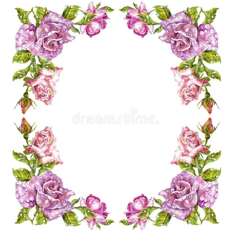 Tarjetas de felicitación de la pintura de la acuarela Fondo de Rose, composición de la acuarela Contexto de la flor Ejemplo aisla stock de ilustración