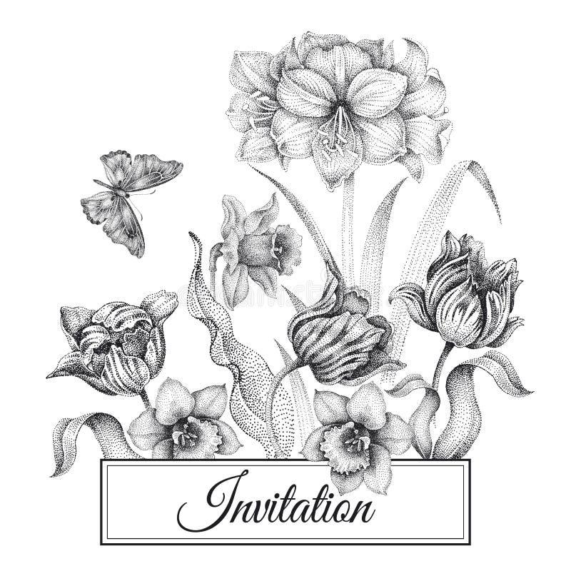 Tarjetas de las plantillas de las invitaciones de la boda con los tulipanes de las flores, amaryll ilustración del vector