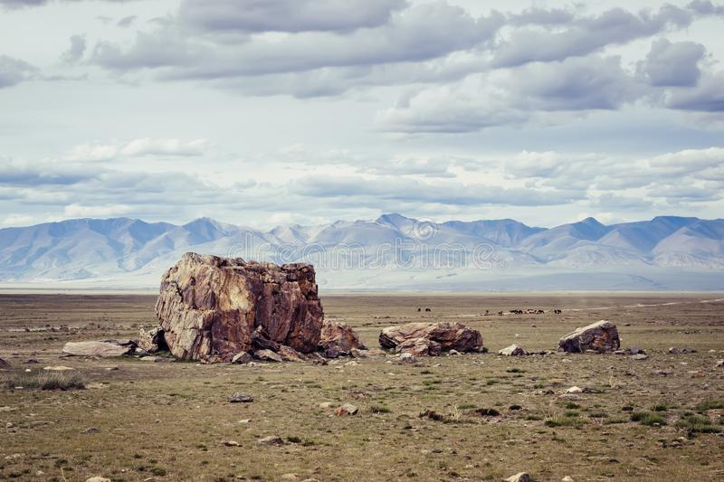 Tarkhatinsky megalithic complex. Steppe and blue mountains on the horizon. Altai Russia stock photography