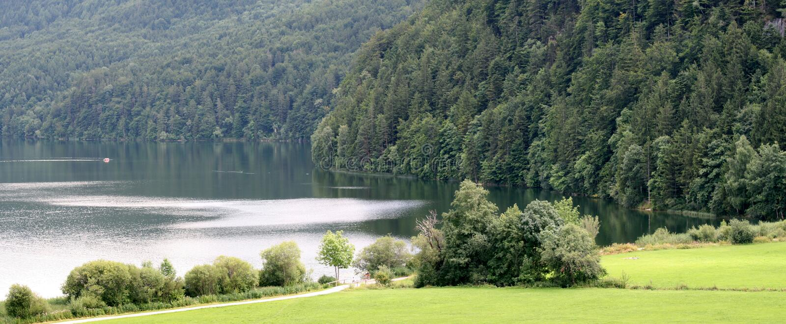 Tarn. In the forest of Alps royalty free stock photography