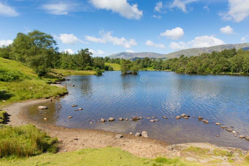 Tarn-Hows die Seen Cumbria England Großbritannien an einem schönen sonnigen Sommertag lizenzfreie stockfotografie