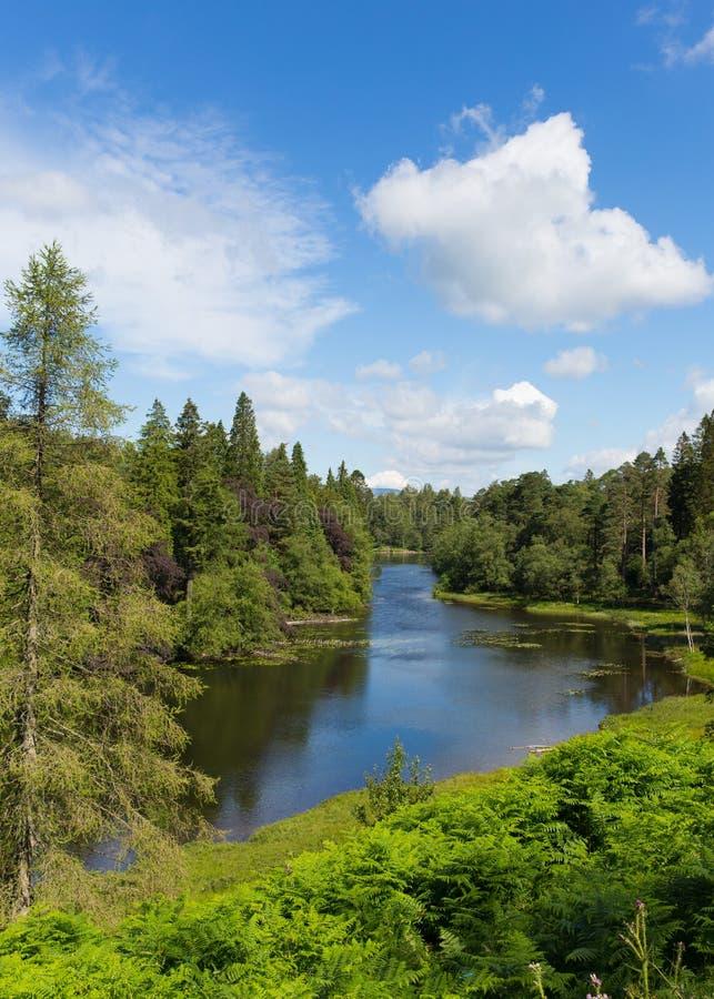Tarn-Hows nahe Hawkshead See-Bezirks-Nationalpark England Großbritannien an einem schönen sonnigen Sommertag stockbild