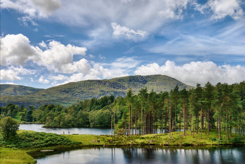 Tarn Hows and Wetherlam. A view of Tarn Hows, a small lake in the English Lake District with Wetherlam in the background stock photos