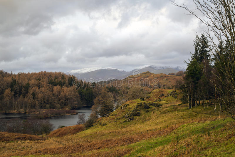 Tarn Hows. In winter, snow covered Helvellyn in the back ground royalty free stock photos
