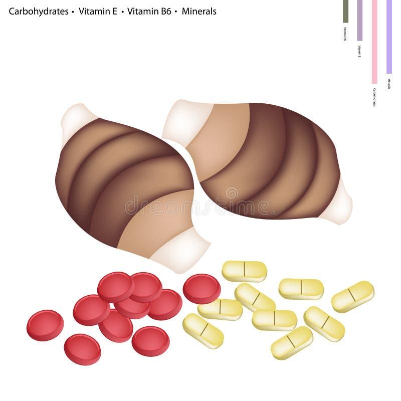 Taro con los carbohidratos, vitamina E, vitamina B6, minerales ilustración del vector