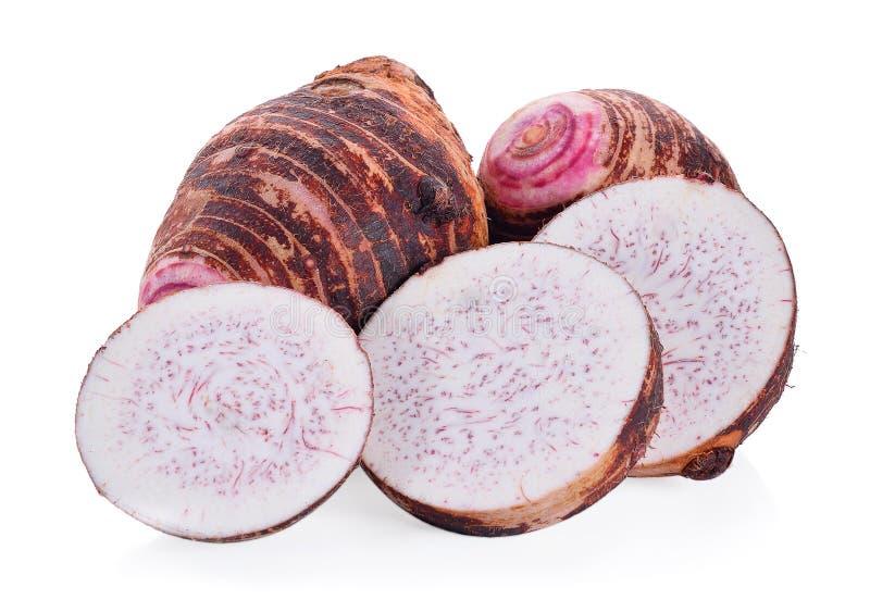 Taro stock image