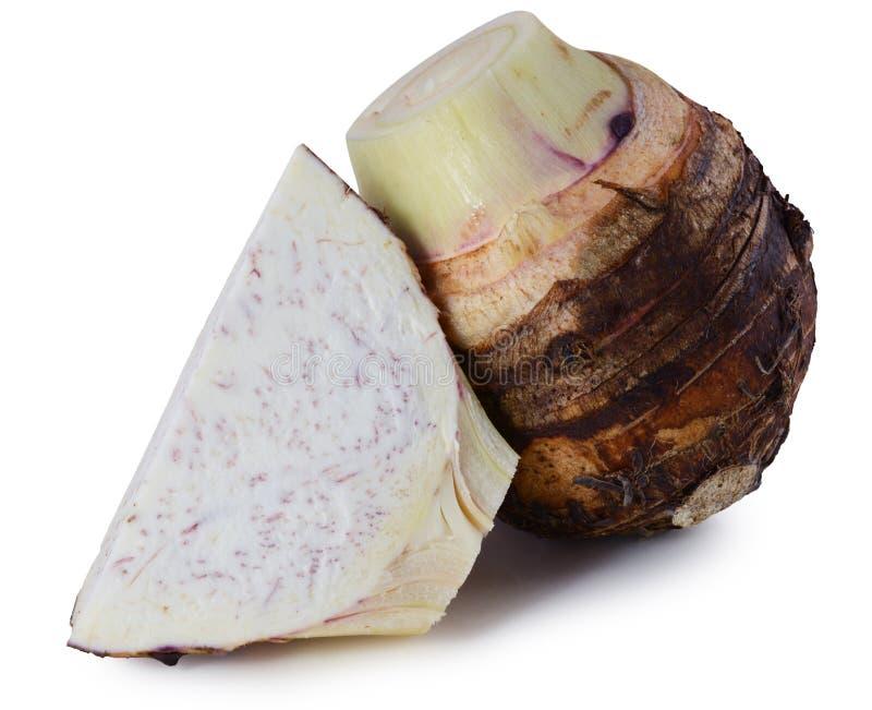 Taro isolato su fondo bianco immagine stock