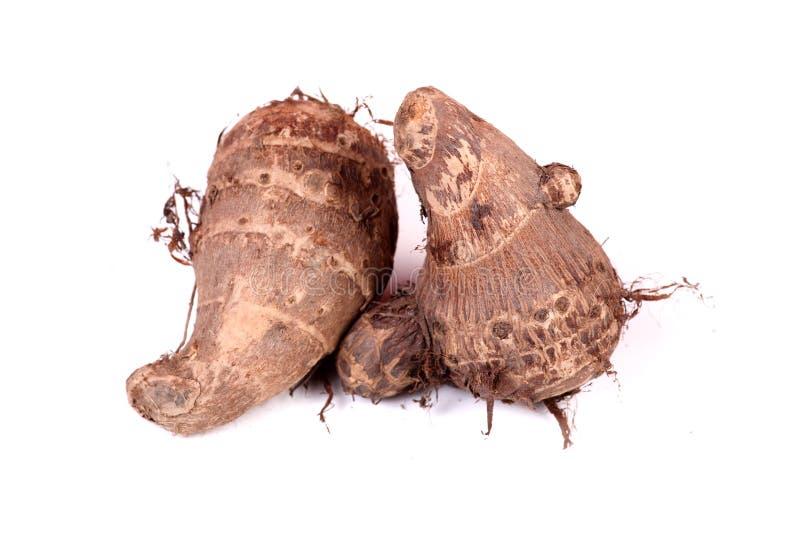 Taro root. Beautiful shot of taro roots on white background stock photos