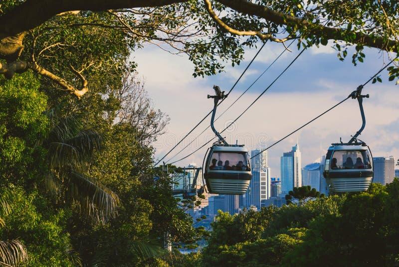 Taronga zoo wagon kolei linowej z widokiem nad Sydney ` s linią horyzontu w dis fotografia stock