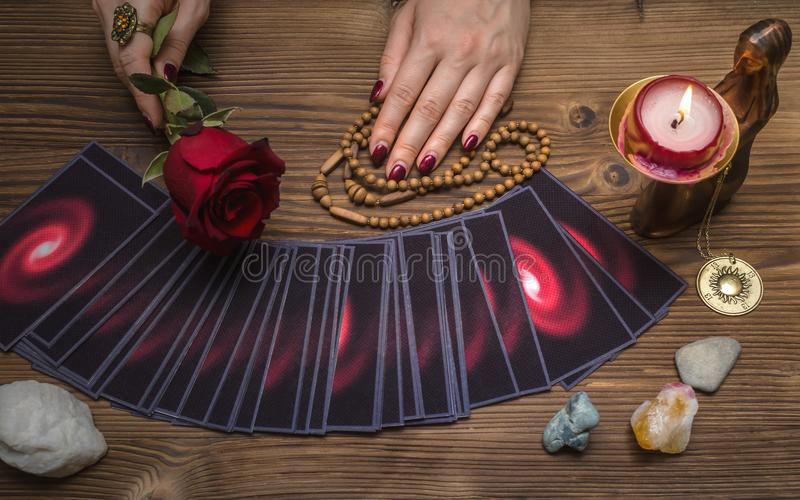 Tarot cards deck. Future reading. Fortune teller. The psychic. Tarot cards and future reading concept. Fortune teller holding in hands a red rose flower and stock image