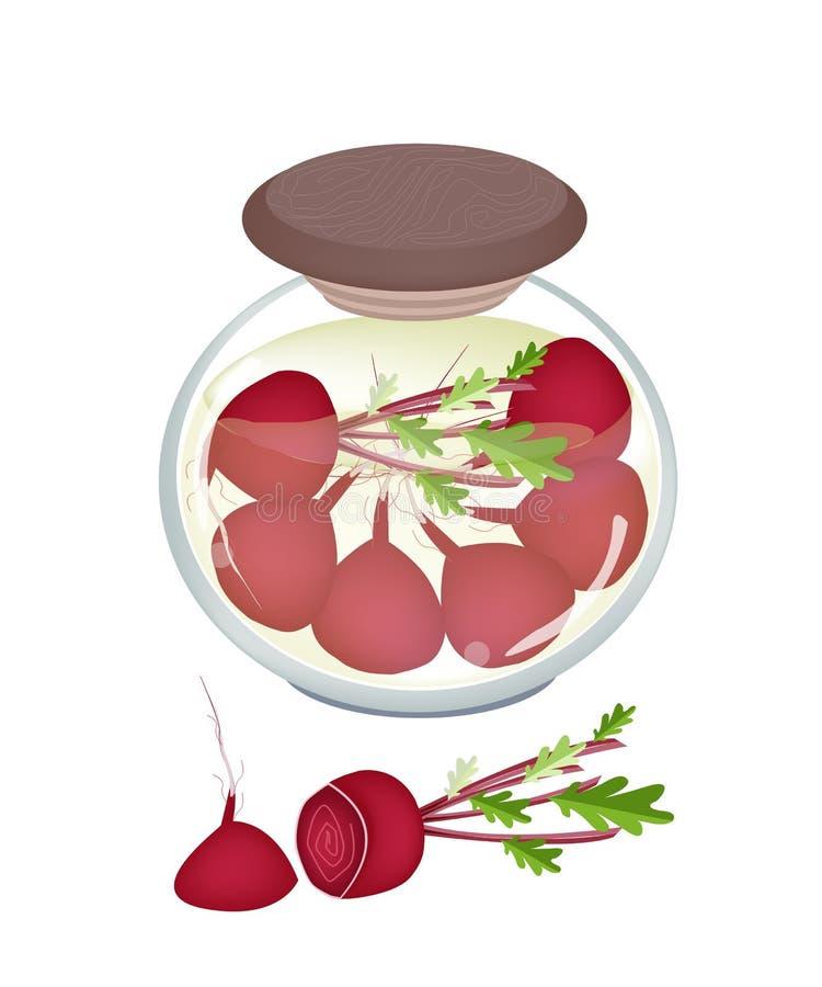 Tarro de rábanos o de remolachas conservados en vinagre con vinagre de la malta libre illustration