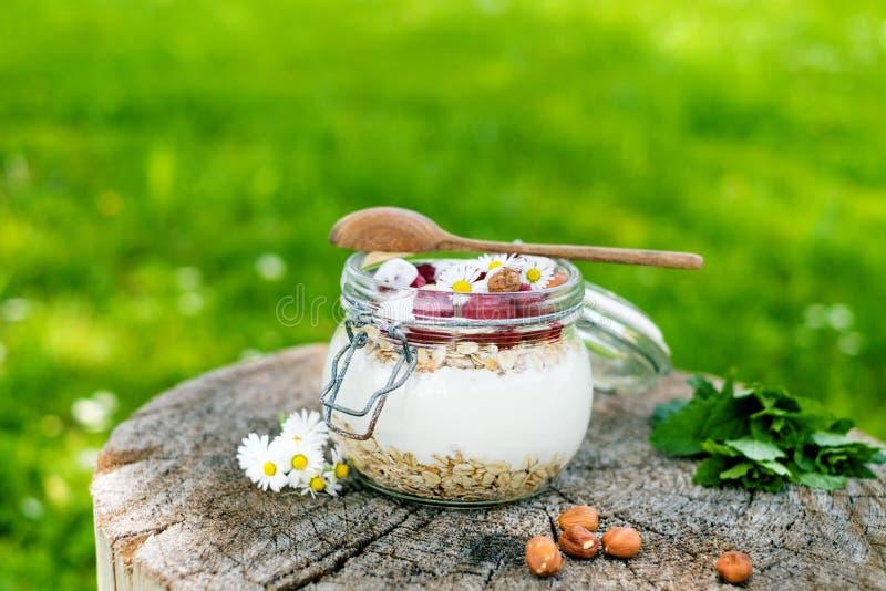 Tarro lleno de muesli, yogur, frambuesas, nueces en una hierba en un jardín Comida hecha en casa de los cereales de desayuno Cons fotos de archivo libres de regalías