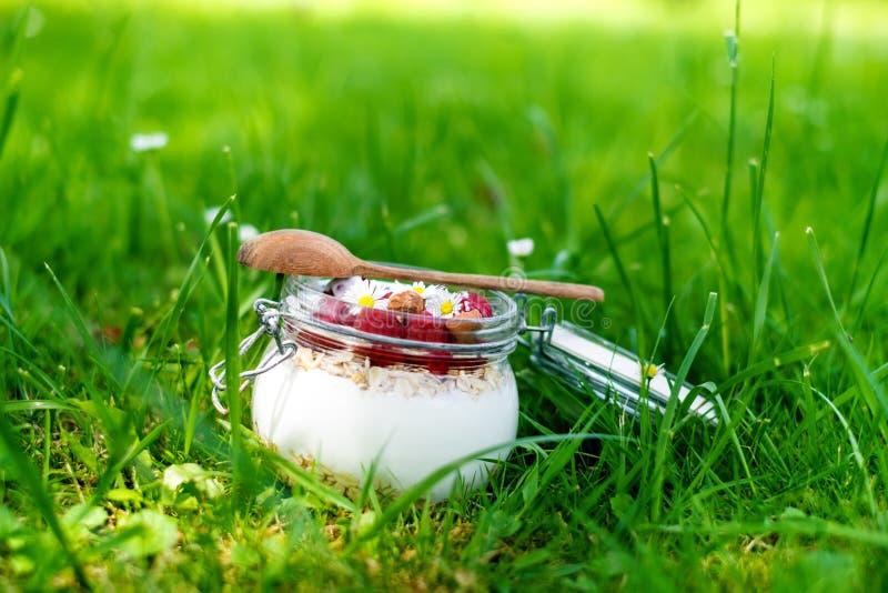 Tarro lleno de muesli, yogur, frambuesas, nueces en una hierba en un jardín Comida hecha en casa de los cereales de desayuno Cons imágenes de archivo libres de regalías