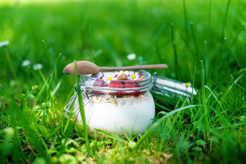 Tarro lleno de muesli, yogur, frambuesas, nueces en una hierba en un jardín Comida hecha en casa de los cereales de desayuno Cons fotos de archivo